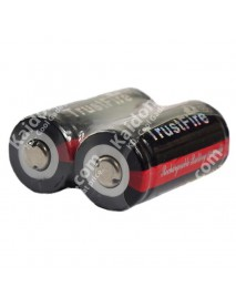 TrustFire 16340 3.7V 880mAh Rechargeable Li-ion 16340 Battery with PCB (2 PCS)